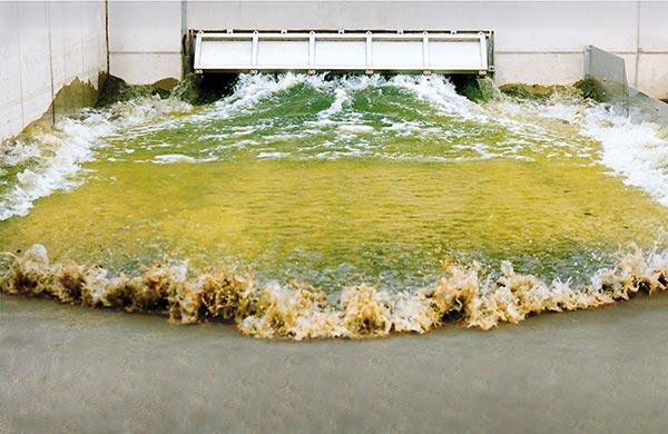 Steinhardt-Gate-Flushing-System_600a